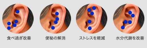 耳リフレクソロジー